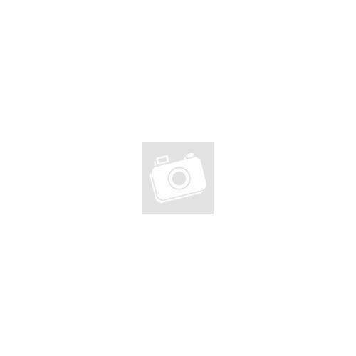 4f1fd0658e Kép 1/1 - Bicycle Line Dajiane női rövid ujjú mez - S - fehér/fekete